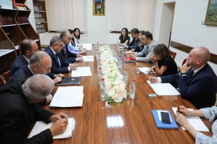 IC Deputies Chairman Received Representatives of OSCE Expert Group (photos)